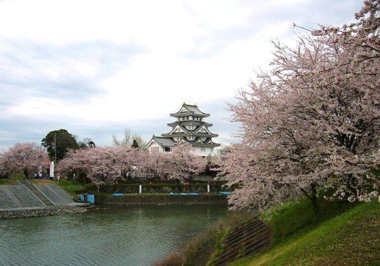 墨俣城、桜、お花見