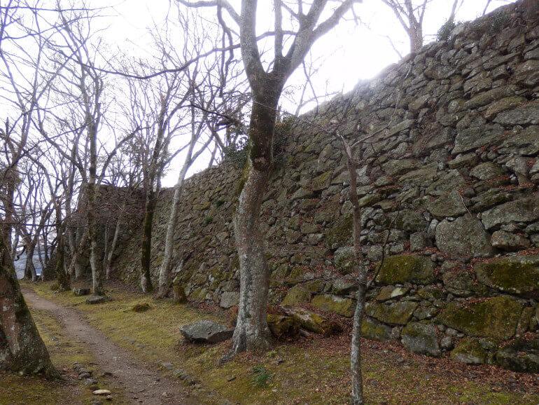 津山城、石垣、苔、自然石