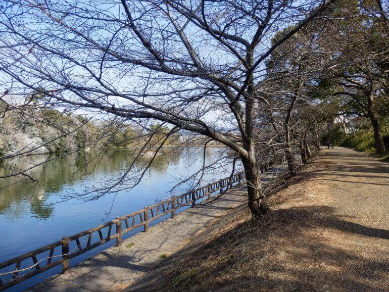 大和郡山城、水堀、鷺池沿い