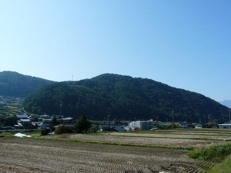 松本城、林城