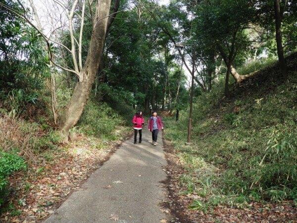 茅ヶ崎城、空堀、遊歩道、壁