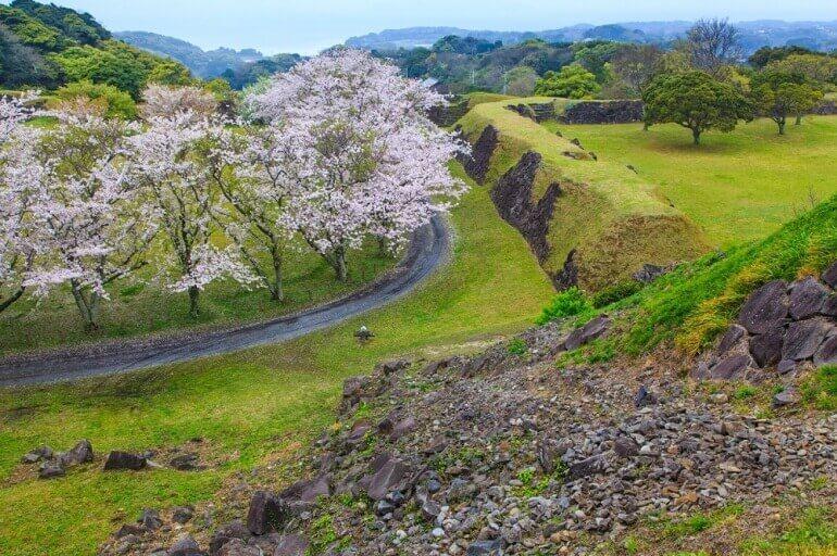 名護屋城、石垣、桜