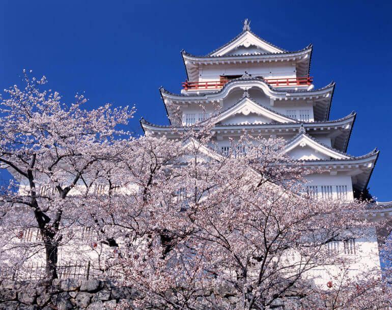 福山城、天守、桜、外観復元