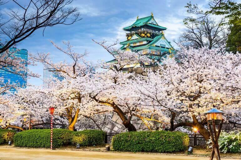 大阪城、復興天守、桜、金装飾