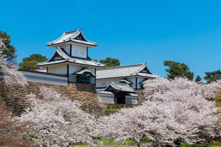 金沢城、石川門、桜