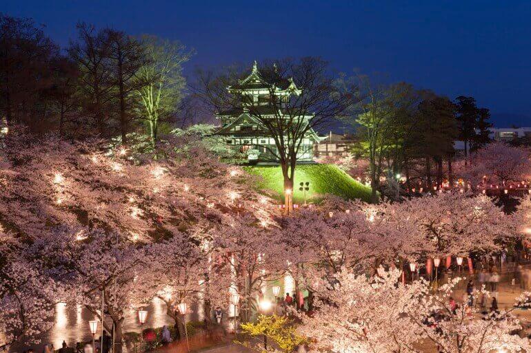 高田城、夜桜