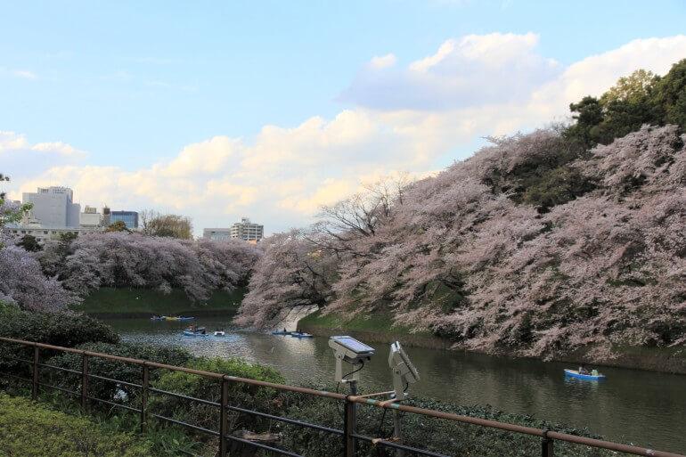 江戸城、お花見、千鳥ヶ淵
