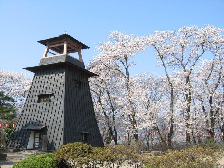沼田城、鐘櫓、桜、真田信吉