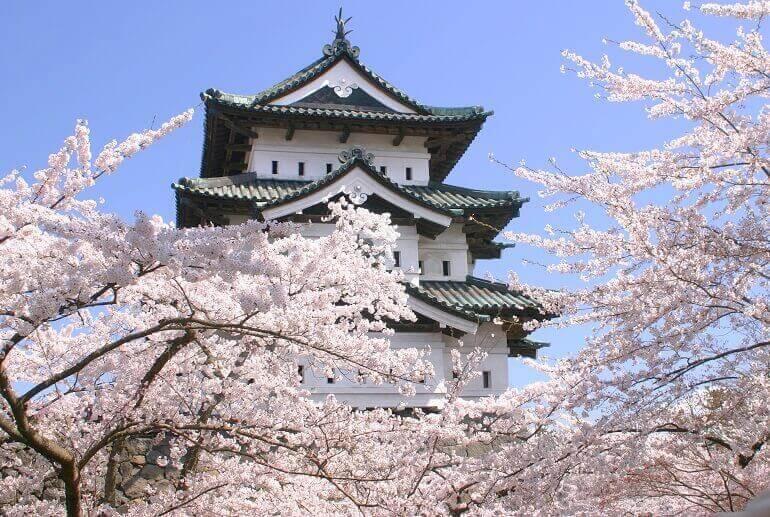 弘前城、桜、天守