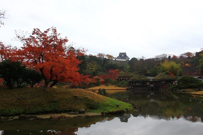 玄宮園、彦根城、庭園、紅葉