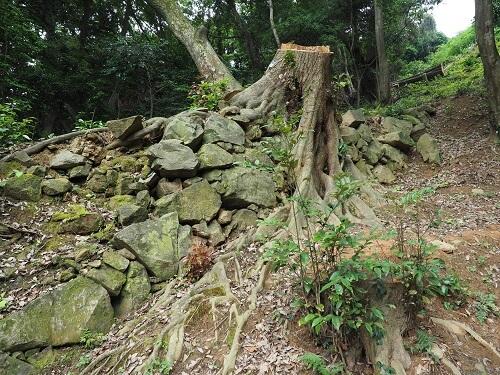 米子城、石垣、本丸