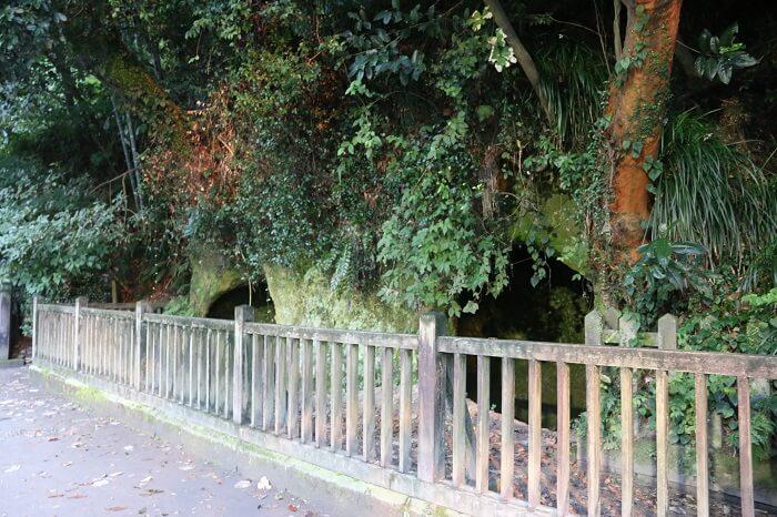 西郷隆盛洞窟、城山、