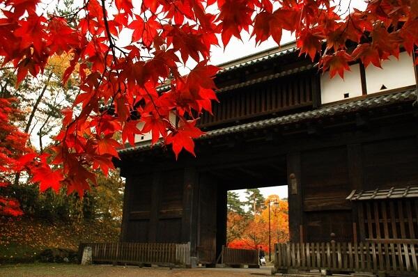 弘前城、紅葉、東門