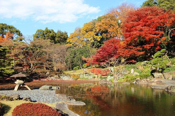 東御苑二の丸庭園、江戸城、回遊式庭園、紅葉