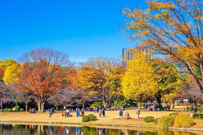 江戸城、北の丸公園、紅葉