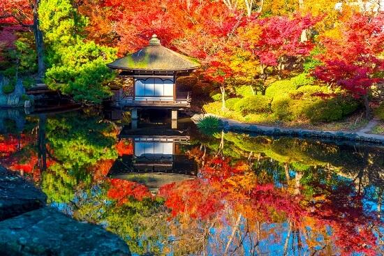 和歌山城、紅葉、紅葉渓庭園、池