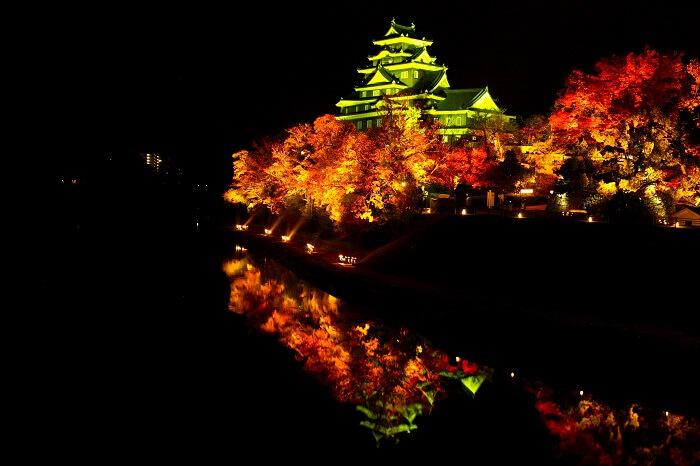 岡山城、ライトアップ、紅葉