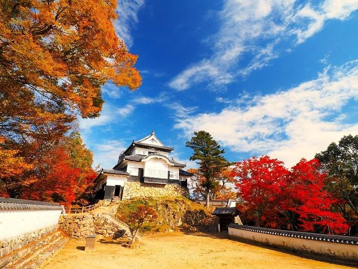 備中松山城、紅葉、雲海