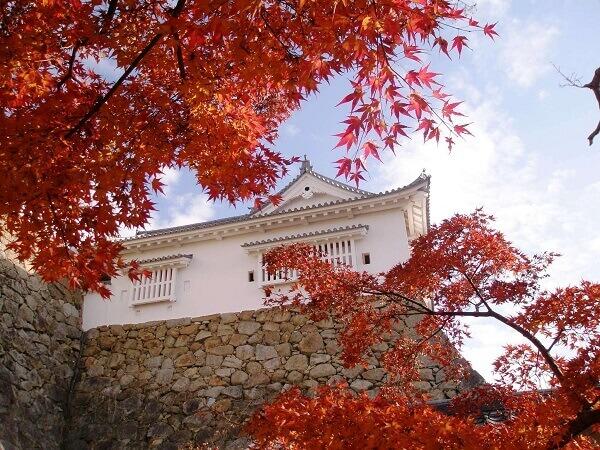 津山城、石垣、紅葉