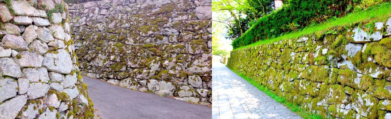 穴太積の石垣