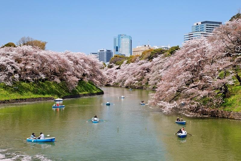 千鳥ヶ淵公園、江戸城
