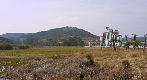 倭城 西生浦城