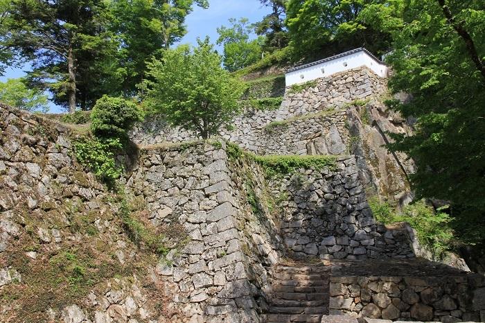 大手門脇、岩盤、石垣