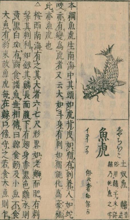 金鯱、名古屋城天守、和漢三才図会