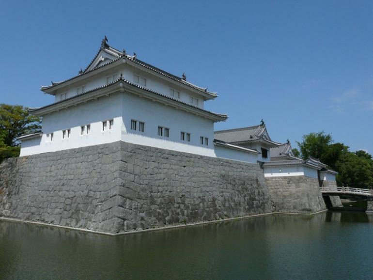 大坂の陣、徳川家康、駿府城