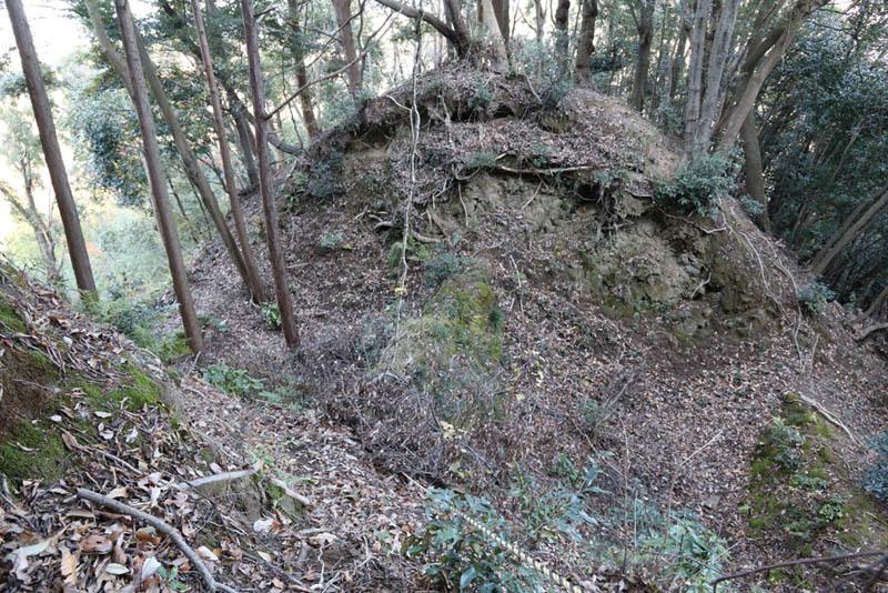 韮山城、障子堀