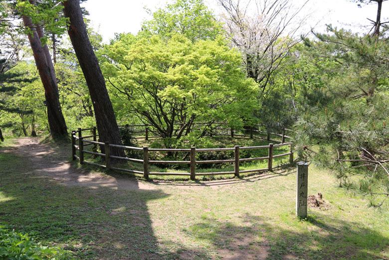 春日山城、大井戸