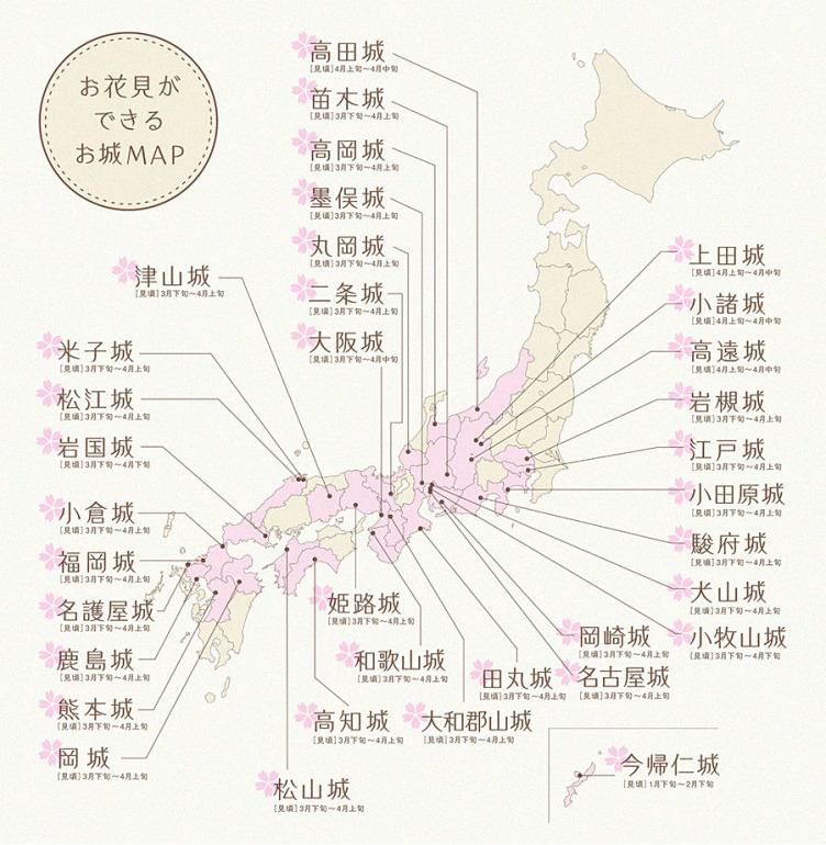 桜 開花 2020 関東
