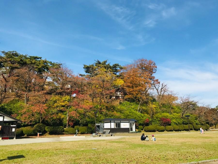 久保田城、紅葉