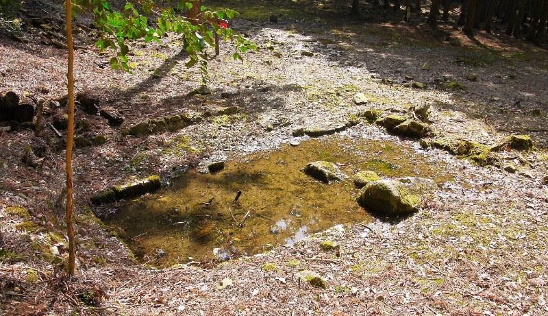 吉田郡山城、蓮池の跡