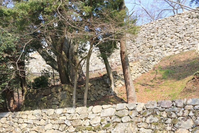 彦根城、登り石垣
