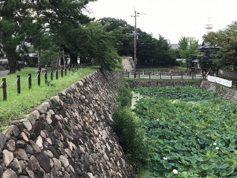 中津城、石垣、輪取り