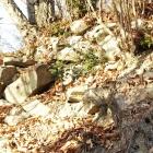 石積の弓射陣地
