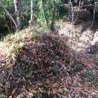 土和田砦土塁跡