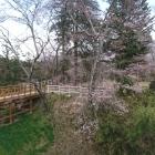 本丸に続く木橋