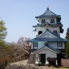 名残の桜と稲庭城