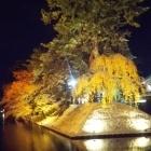 紅葉と初雪とライトアップ