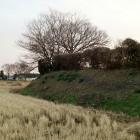 右の高地が本丸、左の水田が堀跡。