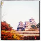 秋の熊本城