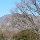 虚空蔵山(響きがかわいい🐘♪)