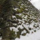 石垣+苔+雪が感動ものだったので、