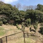 城址はこの山の中。攻めるの禁止。