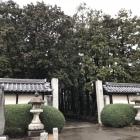 雨の日のお寺もしっとりしていいですね。