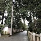 左が慶元寺で右が氷川神社