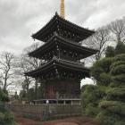 墓所の中の三重塔