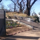 幸ヶ谷公園